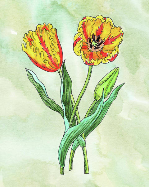 Wall Art - Painting - Watercolor Yellow Parrot Tulips Botanical by Irina Sztukowski