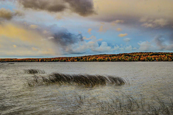 Digital Art - Waterery Grass And Fall Color Dsc_0659 by Michael Thomas