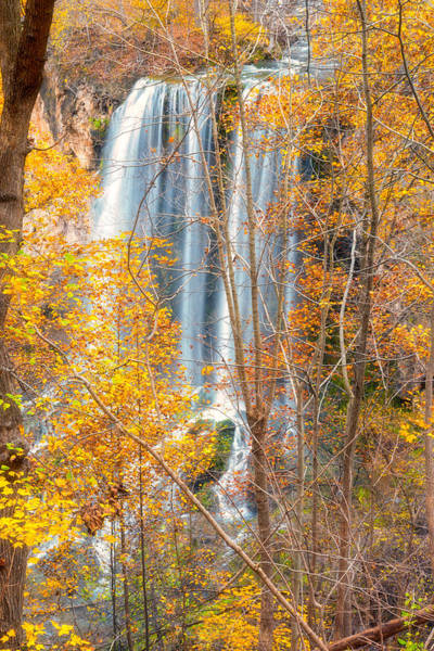 Photograph - Waterfall Backdrop by Russell Pugh