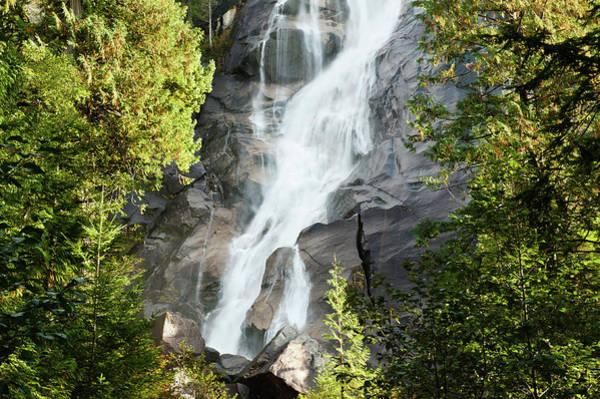 Cedar Tree Photograph - Waterfall by Generistock