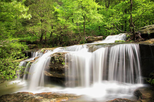 Wall Art - Photograph - Waterfall In Forest, Burden Falls by Panoramic Images