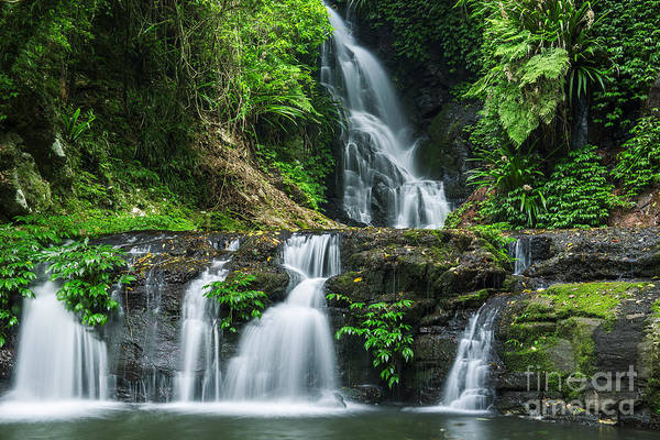 Queensland Wall Art - Photograph - Waterfall In Lamington National Park In by Robdimagery