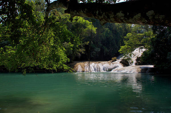 Photograph - Waterfall In The Jungle In Chiapas by David Resnikoff