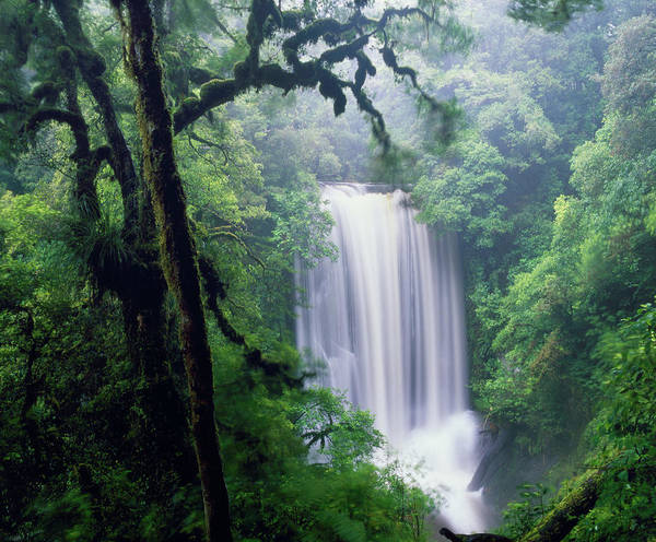 Scenery Photograph - Waterfall In The Rain by James Osmond