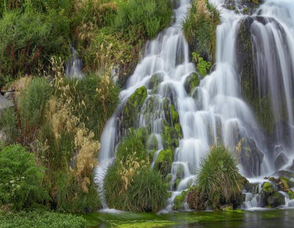 Photograph - Waterfall, Niagara Springs, Idaho by Tim Fitzharris