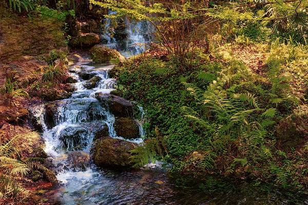 Wall Art - Photograph - waterfall Rainbow springs by Louis Ferreira