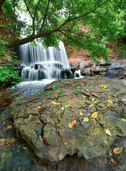 Photograph - Waterfall, Tanyard Creek, Arizona by