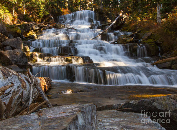 Wall Art - Photograph - Waterfalls Flowing Through The Forest by Fremme