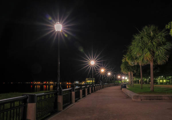 Photograph - Waterfront Park Lights At Night by Dan Sproul