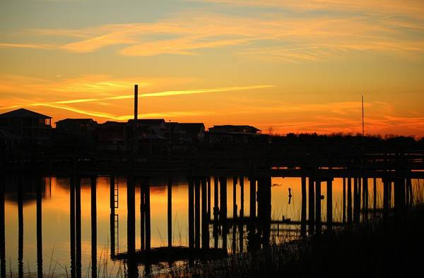 Photograph - Waterfront Sunset by Cynthia Guinn