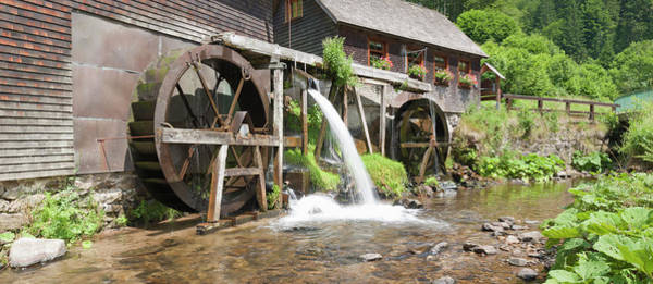Wall Art - Photograph - Watermill In A Forest, Hexenloch Mill by Panoramic Images