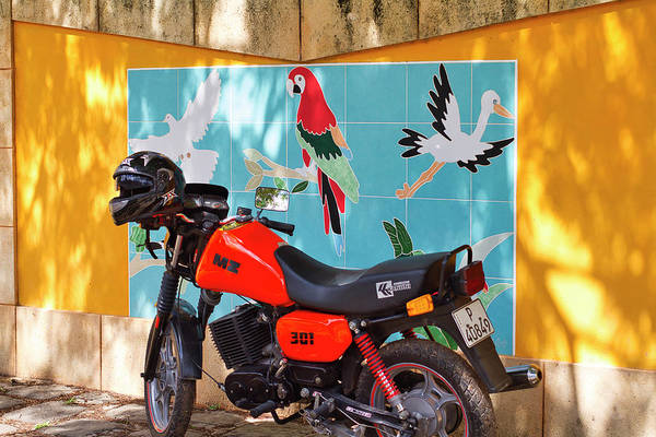 Photograph - Watkin Park Bird Mural And Motorcycle by Paul Rebmann