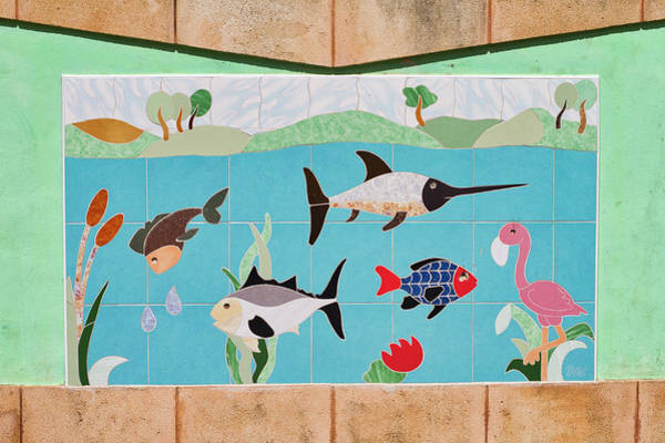 Photograph - Watkin Park Fish Mural by Paul Rebmann