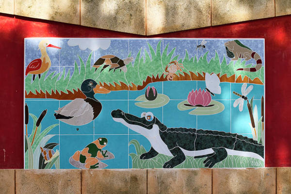 Photograph - Watkin Park Wetlands Mural by Paul Rebmann