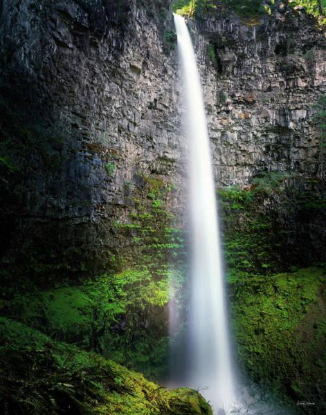 Watson Photograph - Watson Falls by Leland D Howard