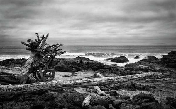 Photograph - Wave Watching by Steven Clark