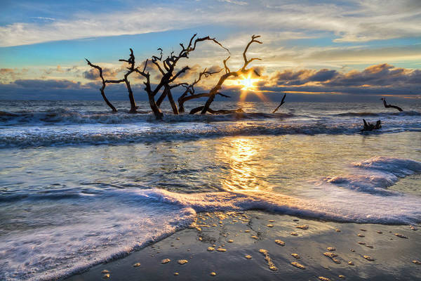 Photograph - Waves At Driftwood Beach by Debra and Dave Vanderlaan