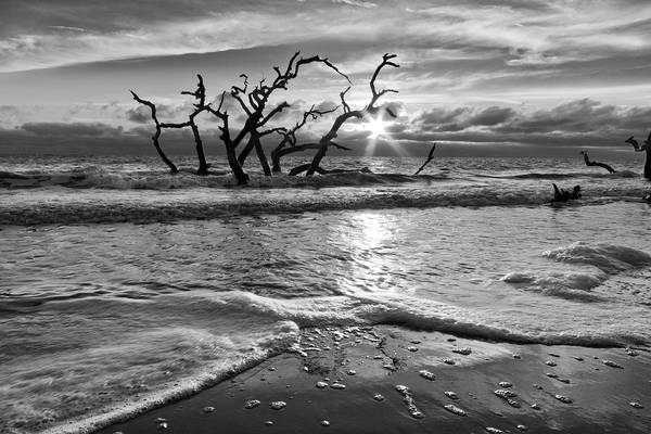 Photograph - Waves At Driftwood Beach In Black And White by Debra and Dave Vanderlaan