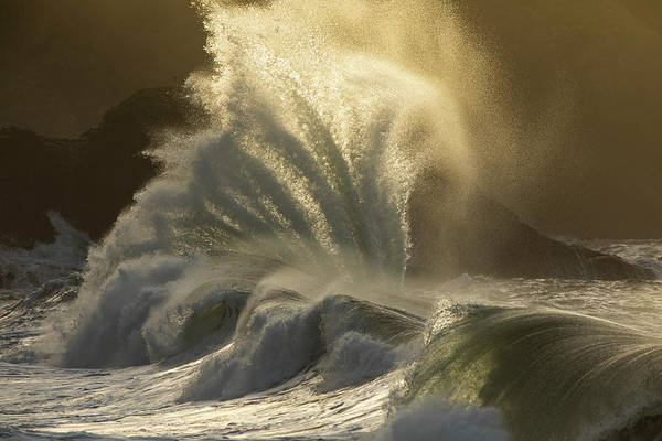 Wall Art - Photograph - Waves Crashing On Seashore, Cape by Panoramic Images