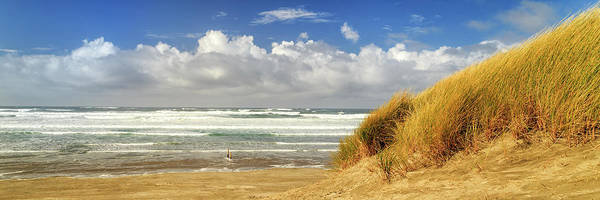 Wall Art - Photograph - Waves Of Grass And Seashore Panorama by James Eddy