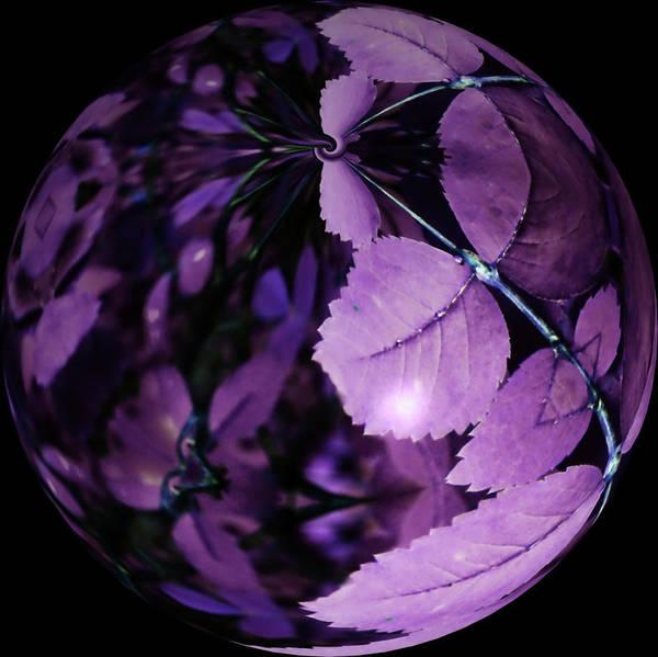 Purple Rain Digital Art - We Are The Earth 2 by Tara Turner