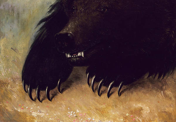 Wall Art - Painting - Weapons And Physiognomy Of The Grizzly Bear, 1848 by George Catlin
