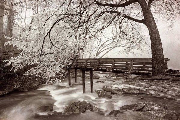 Photograph - Wearing Winter White In Sepia Tones by Debra and Dave Vanderlaan