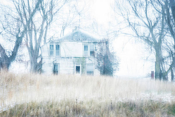 Photograph - Weathered by Melissa Lane