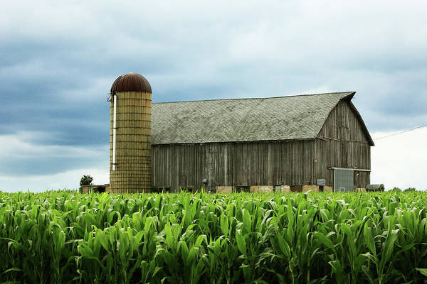 Photograph - Weathered Old Barn by Todd Klassy