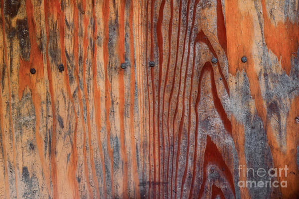 Wall Art - Photograph - Weathered Wooden Background by Tom Gowanlock