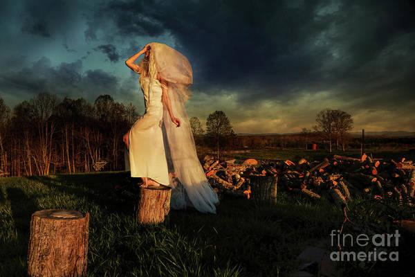 Brimstone Photograph - Weathering by Spokenin RED
