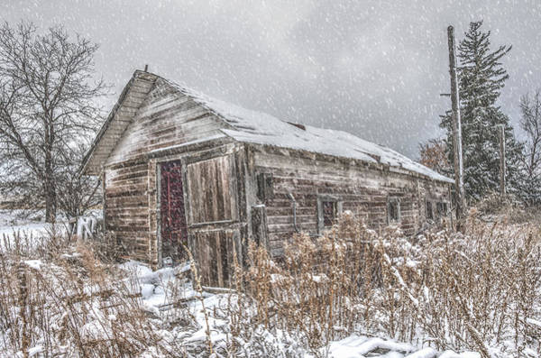 Photograph - Weathering The Storm by Jennifer Grossnickle