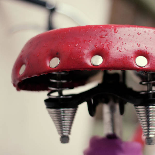 Bicycle Photograph - Wed Red Saddle by Lusiphotography.com