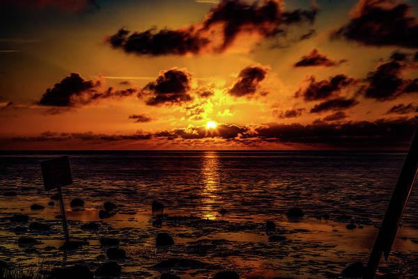 Photograph - Weeki Wachee Sunset by Pete Federico