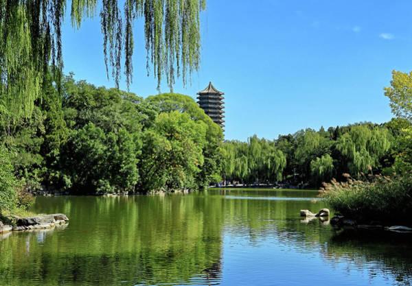 Wall Art - Photograph - Weiming Lake - Peking University - China by Brendan Reals