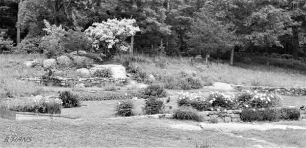 Photograph - Weir Farm Field Garden B W by Rob Hans