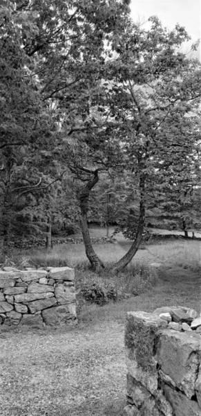 Photograph - Weir Farm Stone Walls B W by Rob Hans