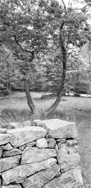 Photograph - Weir Farm Stones And Trees B W by Rob Hans