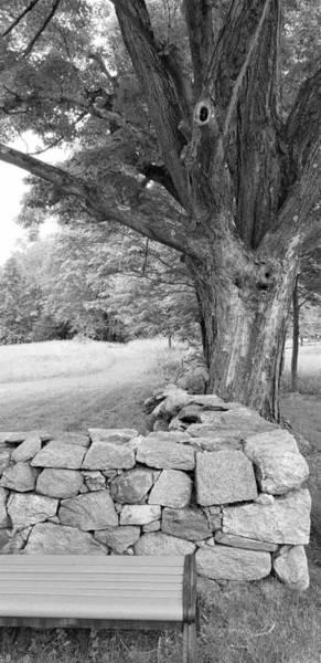 Photograph - Weir Farms Stone Wall B W by Rob Hans