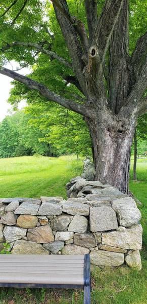 Photograph - Weir Farms Stone Wall by Rob Hans