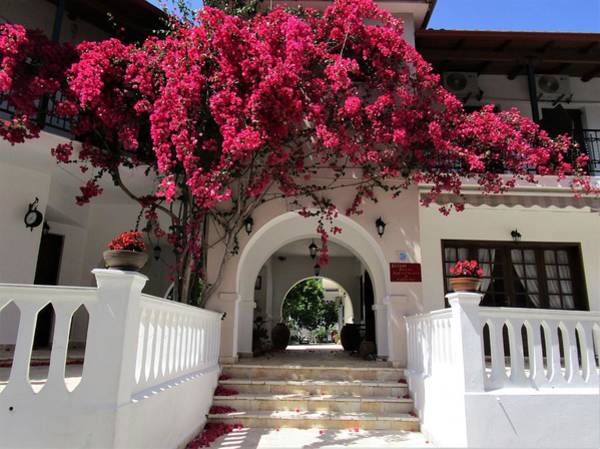 Photograph - Welcomed By Bougainvillea by Rosita Larsson