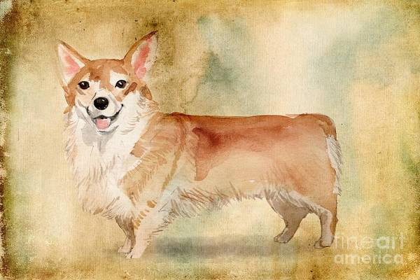Pedigree Painting - Welsh Corgi by John Edwards
