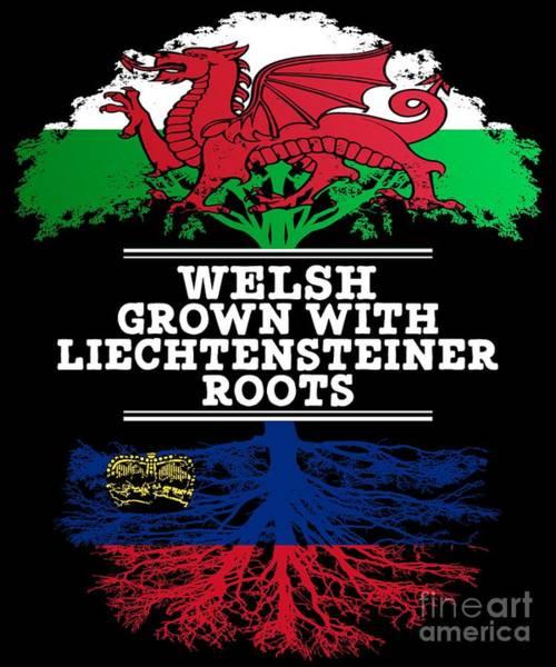 Liechtenstein Digital Art - Welsh Grown With Liechtensteiner Roots by Jose O