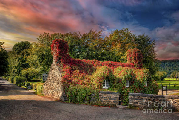 Wall Art - Photograph - Welsh Tea Room Llanrwst by Adrian Evans