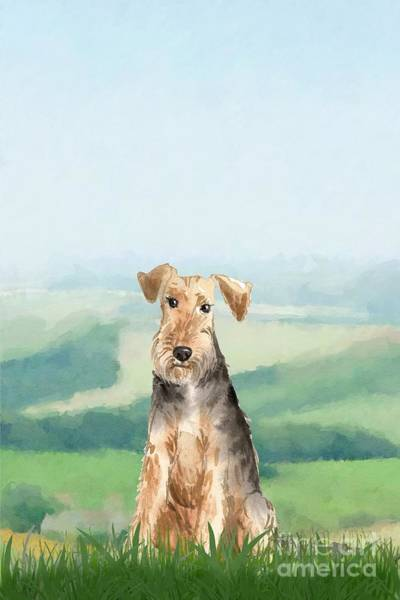 Pedigree Painting - Welsh Terrier by John Edwards