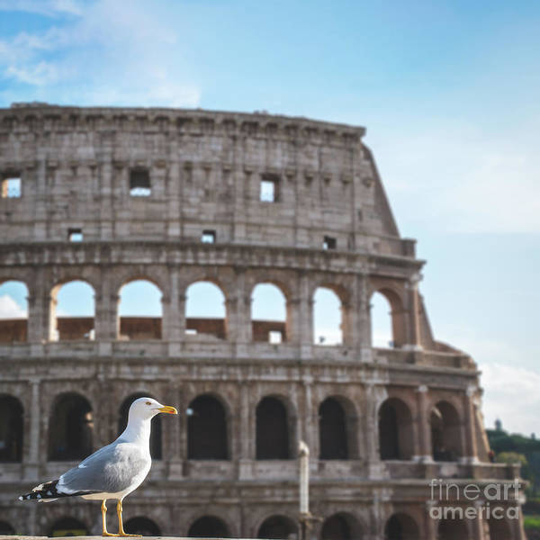 Wall Art - Photograph - Welcome To Rome by Luis GA