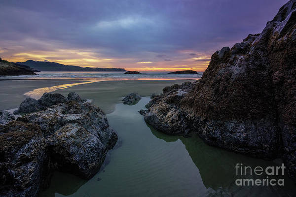 Photograph - West Coast by Carrie Cole
