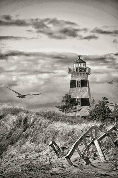Photograph - West Point Lighthouse Sepia by WB Johnston