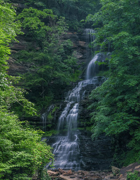Photograph - West Virginia Cathedral Falls Vertical by Dan Sproul
