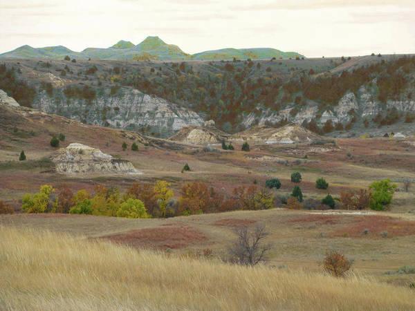 Photograph - Western Edge Grasslands Grandeur by Cris Fulton